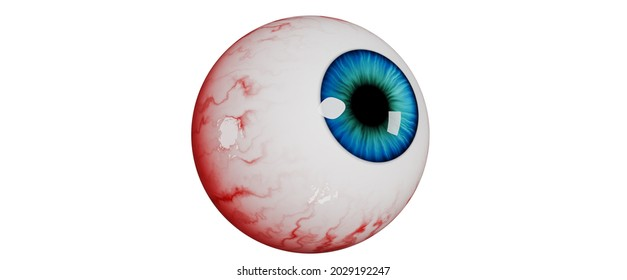 Realistic human eye isolated on a white background. Realistic bloody eyeball, 3d render. 3d illustration for Halloween.