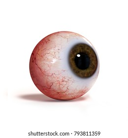 realistic human eyeball with brown iris isolated on white background (3d render)