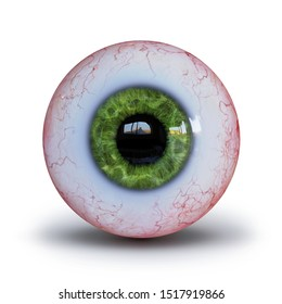 realistic human eyeball with green iris isolated with shadow on white background (3d render)