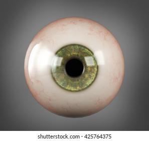 Realistic human eyeball green iris pupil isolated on dark grey background, 3D rendering