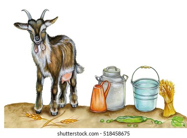 realistic illustration of a goat with buckets. Watercolor hand drawn illustration on white background.