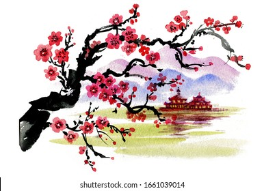 Realistic sakura blossom - Japanese cherry tree isolated on white background. Watercolor painting.