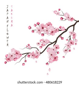 фотообои Realistic sakura japan cherry branch with blooming flowers illustration