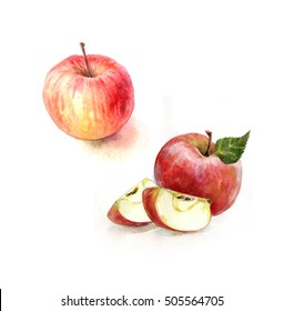 Red apple on white background. Watercolor illustration of cut and whole red apples. Apples collection. Apples set. Watercolor apples  isolated on the white background.