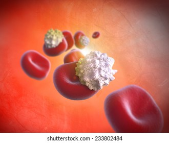 Red Blood Cells and Cholesterol