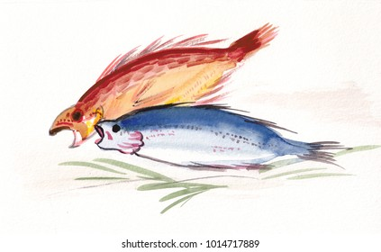 the red and blue fishes on grass