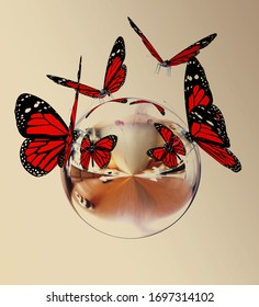 Red butterfly on reflective sphere. On toned background. 3d render