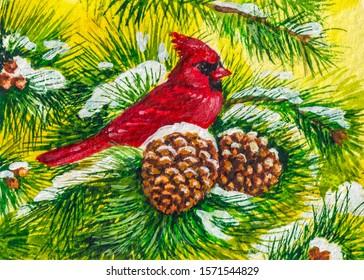 Red cardinal bird on pine tree. Cold winter season with snow.