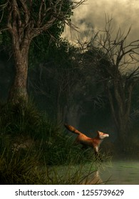 A red fox stands in long grass at the edge of a hazy green pond lined with twisted trees in a dense swamp.  This small predator appears to be startled by something on the other shore. 3D Rendering