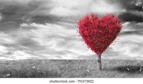 Red heart shaped tree on black & white landscaped background 3D Rendering, 3D Illustration