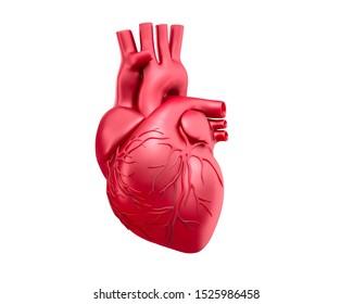 Red human heart model - 3D illustration