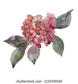 Hydrangea Tattoo Stock Illustrations, Images & Vectors | Shutterstock