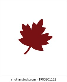 Red leaf with white background