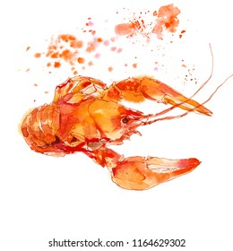 Red lobster, crayfish watercolor illustration sketch isolated on white background