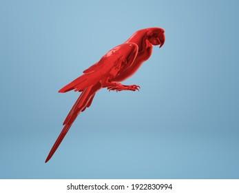 red parrot 3D illustration on blue background.