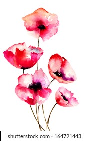 Red Poppy flowers, watercolor illustration