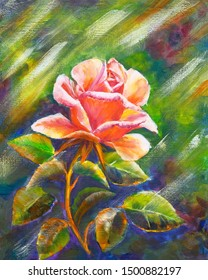 Red rose in sun, oil painting on canvas