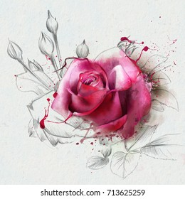 Red watercolor rose, with spots of watercolor paint, an element of the sketch. Contemporary art.