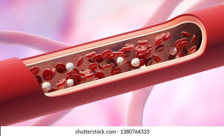 Red and white blood cells in the vein. Leukocyte normal level. 3D illustration