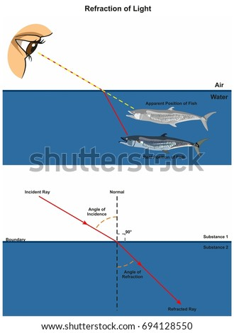 Refraction Light Infographic Diagram Example Human Stock