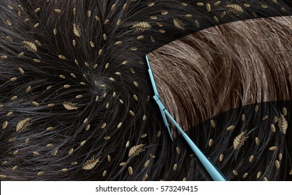 Removing lice as a medical concept with louse insects on human hair as an infestation of parasitic nits or eggs hatching with a wiper wiping away the parasites with 3D illustration elements.