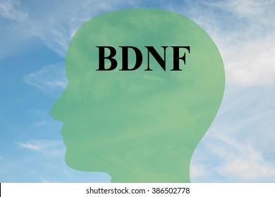 Render illustration of BDNF title on head silhouette, with cloudy sky as a background