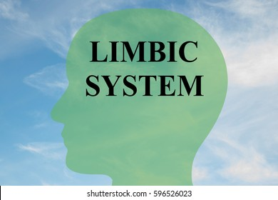 "Render illustration of ""LIMBIC SYSTEM"" script on head silhouette, with cloudy sky as a background."