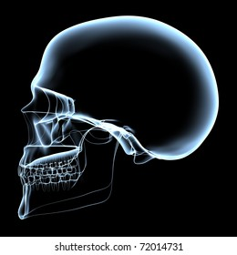 rendered bluish x-ray image of a human skull - side projection