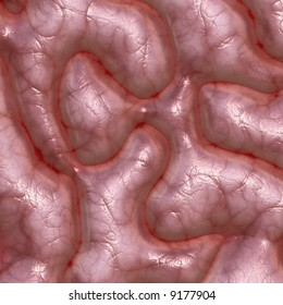 Rendered close up of the human brain.