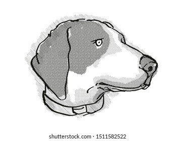 Retro cartoon style drawing of head of a Bluetick Coonhound , a domestic dog or canine breed on isolated white background done in black and white.