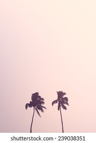 Retro Style Image Of Two Isolated Palm Trees Silhouettes Against A Pale Pink Sky With Copy Space