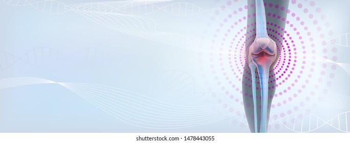 Rheumatoid artritic sore joints concept. Realistic bones of knee skeleton, human leg. Horizontal light blue banner for rheumatoid arthritis advertising, medical publications. illustration stock