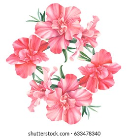 Rhododendron, beautiful bouquet, hand drawing, flowers postcard