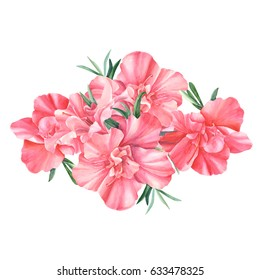 Rhododendron, beautiful flowers bouquet, hand drawing, flowers postcard