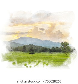 Rice field with mountain and beautiful sky on background. Watercolor painting (retouch).