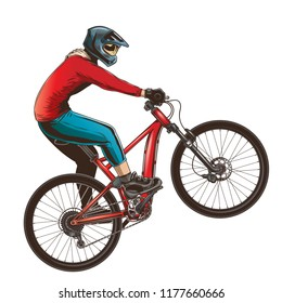 Ride on a sports bicycle, BMX cyclist performing a trick, mountain bike competition, color illustration isolated on a white background