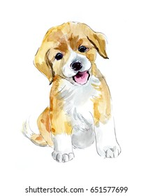 Ridiculous puppy. Watercolor hand drawn illustration
