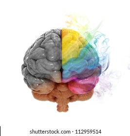 Right and left cerebral hemispheres - creativity and analytical thinking concept