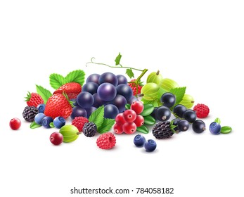 Ripe Berries Template with grape gooseberry strawberry blackberry cranberry bilberry black currant raspberry isolated  illustration
