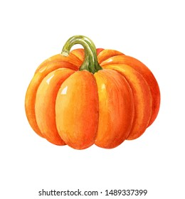 Ripe orange pumpkin isolated on white background. Watercolor handdrawn illustration. Hand made clipart.