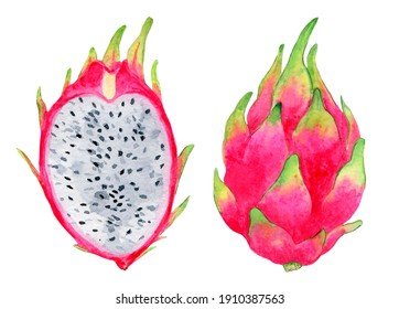 Ripe, pink dragon fruit, whole and cut, juicy illustration. Bright, exotic clipart on a white background.