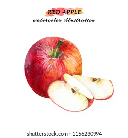 Ripe red apple with two slices isolated on white background. Watercolor hand drawn illustration.