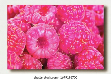 Ripe red berries raspberry by close-up. Oil paint on canvas. Picture with photo, imitation of painting. Illustration