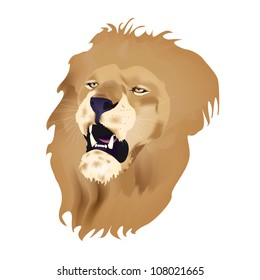 Roaring lion's head isolated on white background