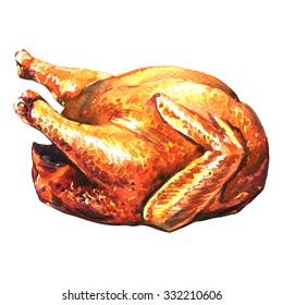 roasted turkey on white background