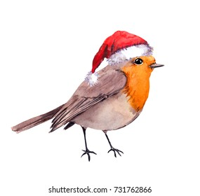 Robin bird in red santa hat. Watercolor for Christmas