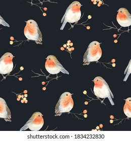 Robin birds and berries rowan on dry branches, seamless Christmas pattern, winter watercolor illustration, print on dark background.