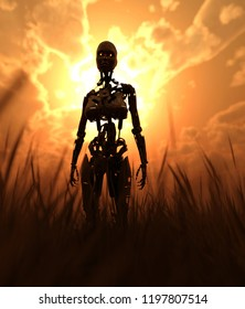 Robot in field with sunlight from behind,fantasy conceptual 3d illustration background