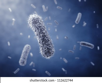 Rod-shaped bacteria ,detailed illustration