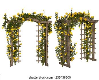Romantic arbor with  yellow roses